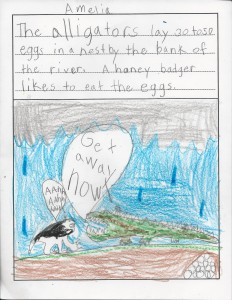 1st grade alligator info comic